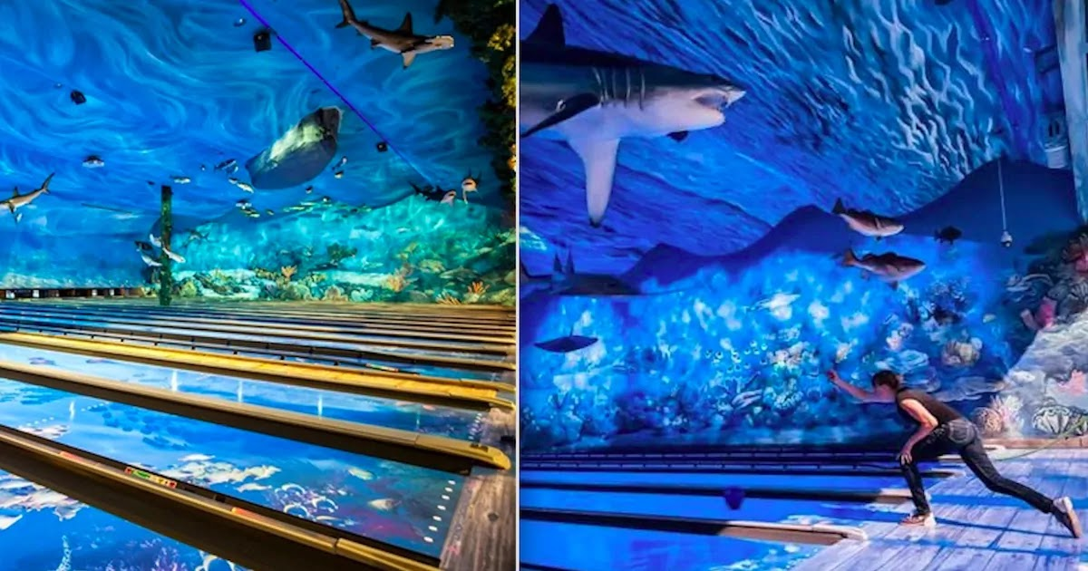 You Can Go Bowling At This Underwater Aquarium With Sea Turtles And Sharks