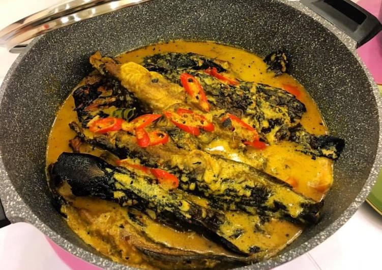 perbezaan jenis ikan keli makan bahan haram dan halal