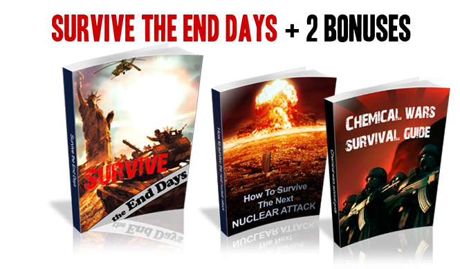 Survive The End Days