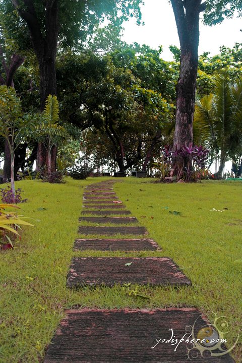 Concrete slabs over green grass under trees as garden elements