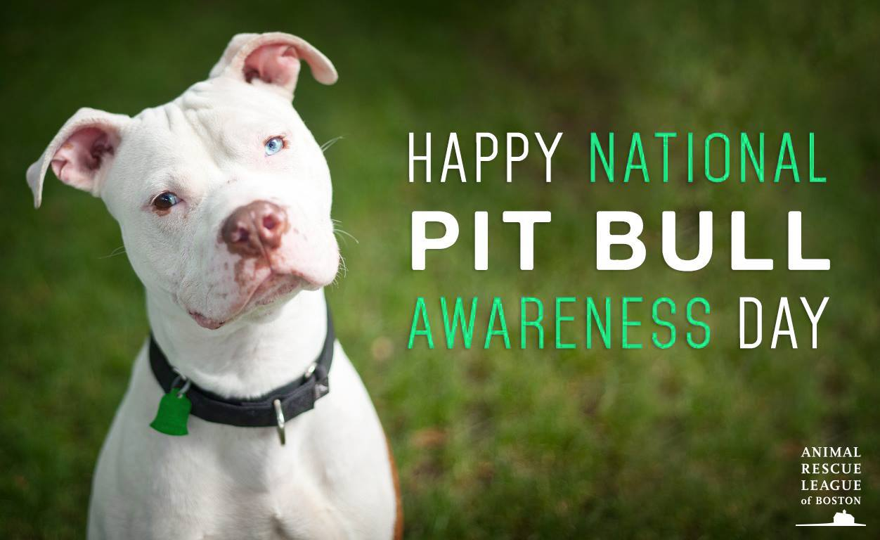 National Pit Bull Awareness Day Wishes Images