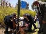 Murid SD dan Pelajar SMP Ethiopia, Tanam Pohon di Taman KBRI Addis Ababa