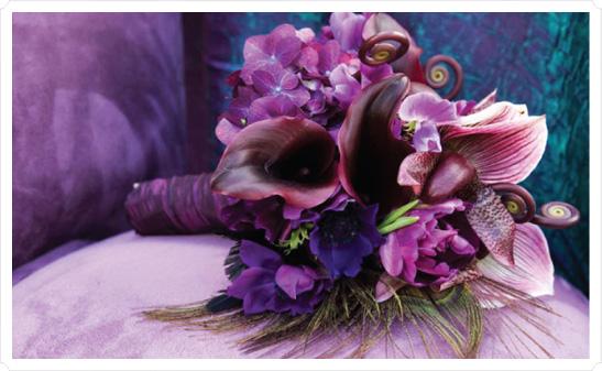 In Style Party Favors: In Style Party Favors: PEACOCK WEDDING THEME