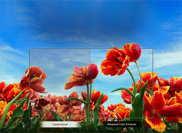 Smart Tivi LED LG 43 inch 43LM6300PTB, Full HD, HDR