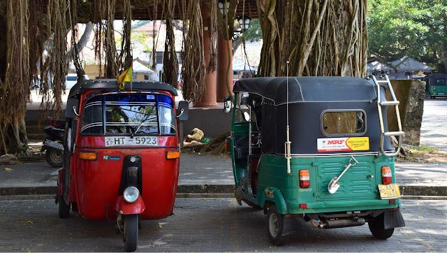 czym podróżować po Sri Lance