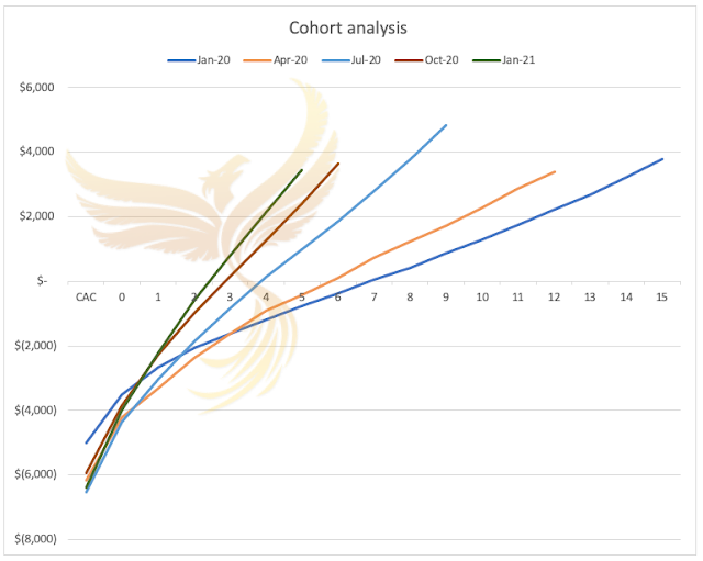 Cohort analysis graph - the phoenix