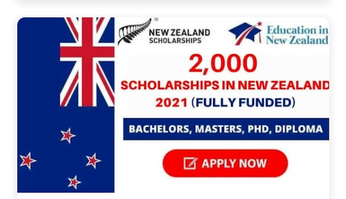 2,000 Scholarships in New Zealand 2021 | Fully Funded By Opportunities Corner -21/05/2021