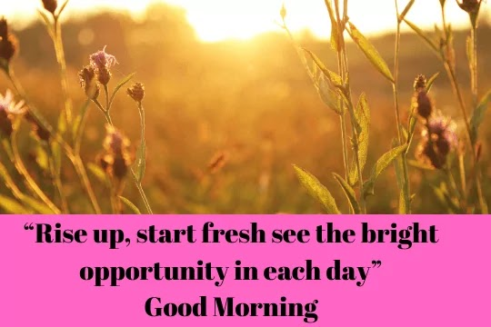 """Lose an hour in the morning, and you will spend all day looking for it."""" """"Good Morning"""