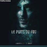 Livre Blog Purplerain • Le puits du fou • Joffrey Sinet
