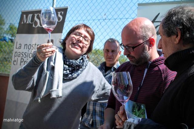 poboleda vins