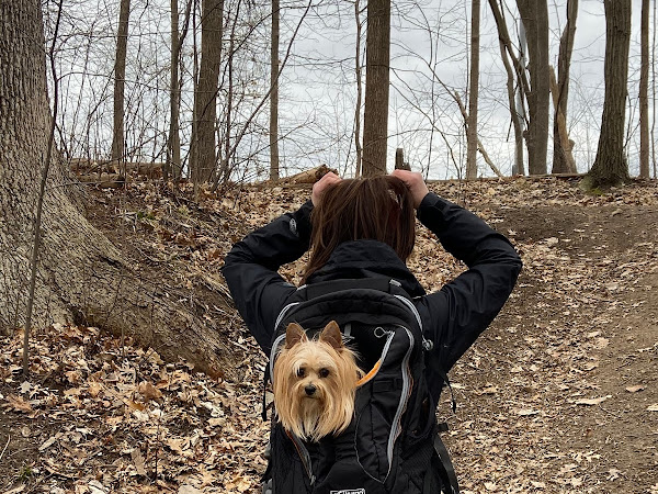 29 Best Hiking Trails in Metro Detroit