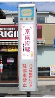 桜に染まる街 京成佐倉駅