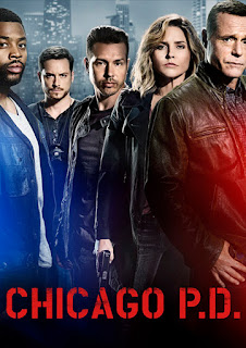 Assistir Chicago PD: Todas as Temporadas – Dublado / Legendado Online HD