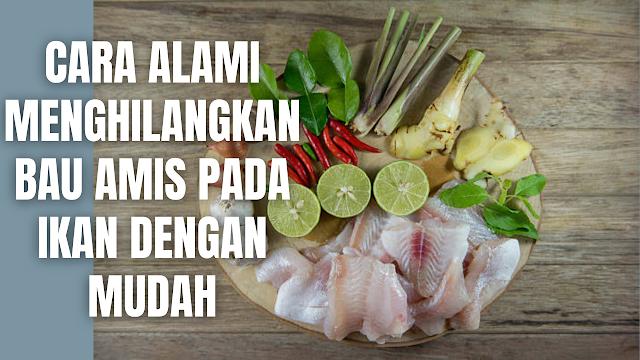 Cara Alami Menghilangkan Bau Amis Pada Ikan Dengan Mudah Bua amis yang masih menempel pada ikan, memang akan membuat cita rasa masakan akan berkurang. Maka dari itu untuk menghilangkan bau amis pada ikan ada beberapa bahan alami yang bisa digunakan dan mudah ditemukan dirumah. Berikut ini bahan-bahan alami untuk menghilangkan bau amis pada ikan.  Air Lemon atau Jeruk Nipis Untuk Menghilangkan Bau Amis Pada Ikan Penggunaan air lemon atau jeruk nipis akan memberikan rasa dan aroma segar pada ikan. Sifatnya yang asam dapat menghilangkan bau amis yang menyengat pada ikan.  Cara menggunakannya cukup dengan melumuri ikan memakai perasan lemon atau jeruk nipis sebelum memasaknya. Selain itu, dapat juga menambahkan potongan lemon atau jeruk nipis saat memasak.    Cuka Untuk Menghilangkan Bau Amis Pada Ikan Penggunaan cuka akan membantu menghilangkan bau amis pada ikan. Cara menggunakannya cukup dengan menyiapkan dan larutkan cuka dengan air secukupnya. Lalu rendam ikan pada larutan tersebut selama beberapa menit. Serta bisa juga, cukup dioleskan saja ke daging ikan untuk kemudian dibilas dengan air bersih.    Mentimun Untuk Menghilangkan Bau Amis Pada Ikan Mentimun yang sudah dihaluskan bisa digunakan untuk menetralkan bau amis pada ikan. Cara menggunakannya cukup dengan parut terlebih dahulu mentimun, kemudian parutan mentimun tinggal di balurkan secara merata pada ikan, diamkan sekitar 20 menit, lalu bilas dengan air bersih yang mengalir.    Jahe Untuk Menghilangkan Bau Amis Pada Ikan Jahe bisa digunakan untuk menghilangkan bau amis pada ikan, hal ini bisa terjadi akibat jahe memiliki aroma yang khas. Cara penggunaanya cukup dengan memarut atau menghaluskan jahe terlebih dahulu, kemudian dibalurkan ke ikan untuk kemudian dicuci bersih.    Garam Untuk Menghilangkan Bau Amis Pada Ikan Garam bisa digunakan sebagai bahan alami untuk menghilangkan bau amis pada ikan. Cara menggunakannya cukup dengan memcuci ikan terlebih dahul sampai bersih, kemudian dibaluri dengan garam. Dia