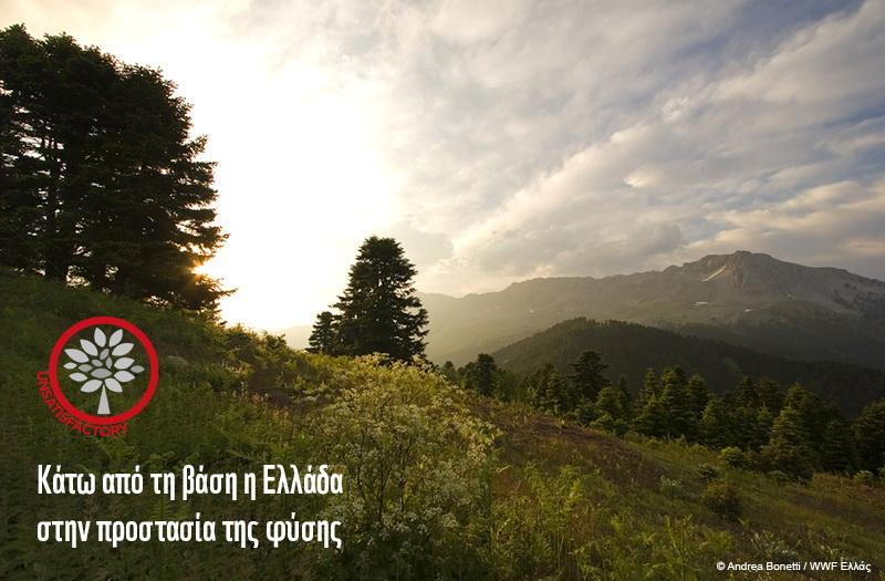 «Κάτω από τη βάση» η Ελλάδα στην προστασία της φύσης