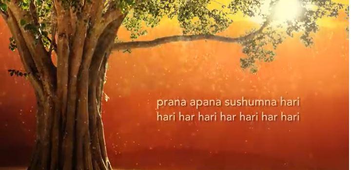 Mantra Meditatie: 'Prana apana sushumna hari'