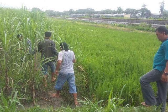 Satuan Reserse Narkoba Kepolisian Resor Blora, Jawa Tengah menemukan 12 paket sabu di kawasan persawahan Desa Kediren, Kecamatan Randublatung, Blora.