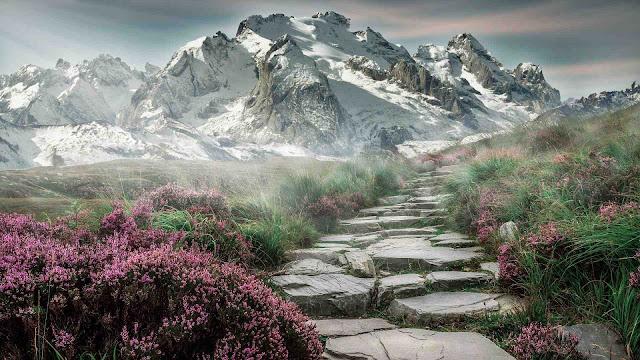 20+ Best Hd Landscape Wallpaper
