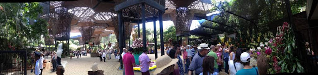 Exposición de Orquídeas en el Jardín Botánico
