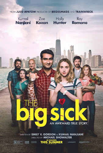 The Big Sick (BRRip 1080p Dual Latino / Ingles) (2017)
