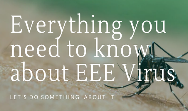 Everything You Need To Know About EEE Virus