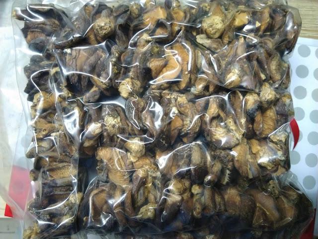 Nam huong rung Dien Bien