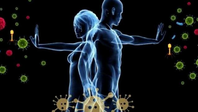 ¿Qué es sistema inmunológico?