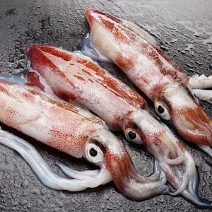 Belah Cumi-Cumi saat Masak Seafood, Warganet Ini Teriak Lihat Isinya
