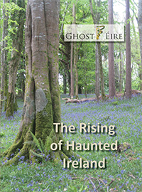 The Rising of Haunted Ireland by Kerrigan et al.