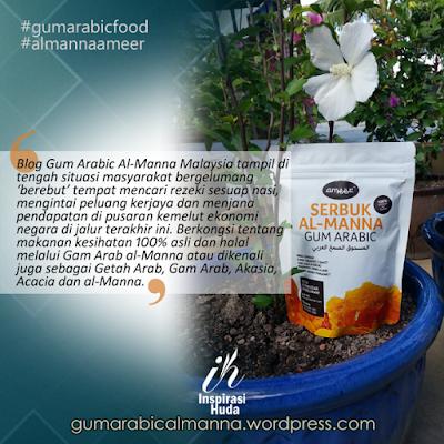 gum arabic almanna ameer, almanna ameer, gum arabic food, inspirasihuda, stokis almanna ameer kota bharu,