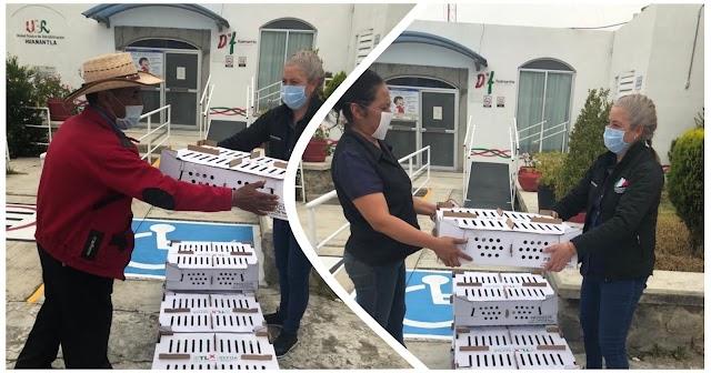Entregan 12 paquetes de codornices a familias Huamantlecas