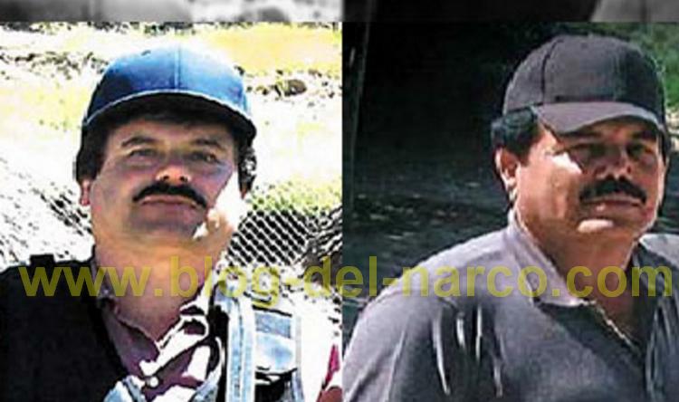 """El """" Chapo"""" ve cada vez mas cerca la muerte en TEXAS y se lleva al """"Mayo"""" entre las patas"""