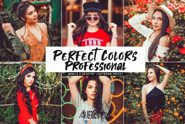 Free Perfect Colors Professional Mobile & Desktop Lightroom Preset
