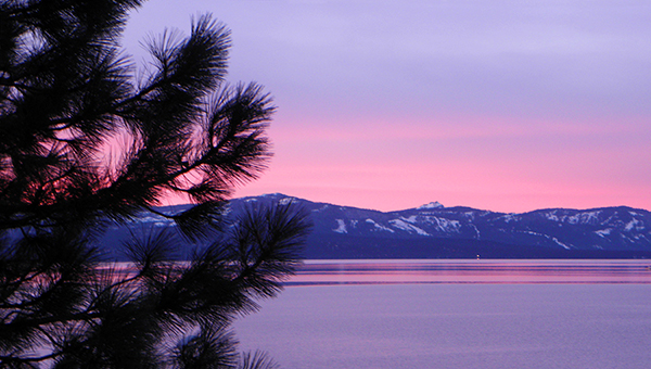 Colorful sunset over Lake Tahoe with iconic pine tree