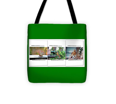 "This photo features one of the tote bags I have designed. The one here has a has a kelly-green background. The item is made of poly-poplin. My totes come in three sizes (13"" by 13,"" 16"" by 16,"" and 18"" by 18"") each item the one seen here is 13"" by 13."" Each tote includes a one inch strap for easy carrying on your shoulder. All seams are double stitched for added durability. These are machine washable (in cold water) and the same image (in this case that image is of the book jackets for my three volume book series, ""Words In Our Beak.""**) is printed on both sides.  *Info re this tote is @https://bit.ly/2Wyez2T **Info re these books is @ http://bit.ly/2EdADpx"