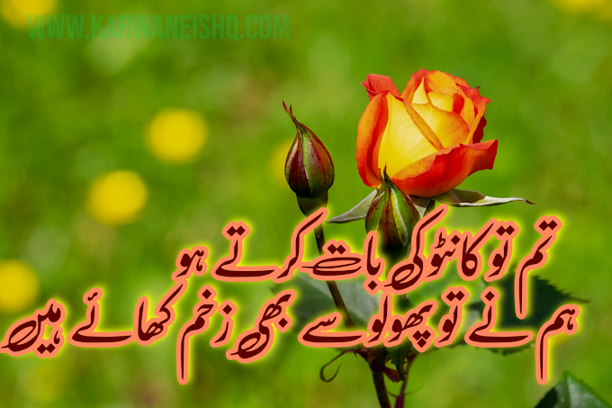 Sad Poetry | Urdu Sad Poetry | New Shayari