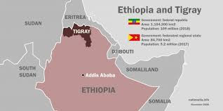 US Sees Significant Risk That Tigray Conflict Will Spread Beyond Region