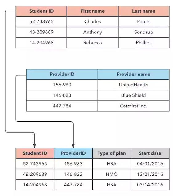 relational Model of database-in bengali -detalis-overview