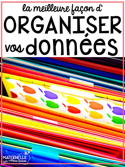 Keep your student data organized using a data binder! All in French, this binder will make it easy to keep all important student data at your fingertips. Start your year organized this year!