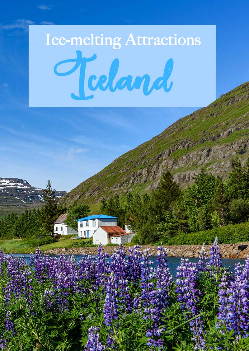 Visiting Iceland will give you a unique experience, seeing more than just the northern lights, sleeping under the stars, and diving between two continents are surely worth writing down your travel diary.  Here, you will experience being close to nature, see how life is far from the hustle and bustle of the city.
