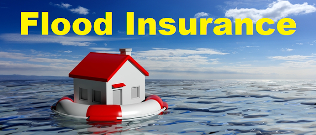 Why to choose GEICO flood insurance? GEICO flood insurance policy quote
