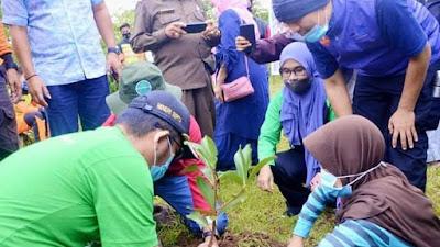 Peduli Lingkungan, Tapak Humanity Tanaman Bibit Pohon di Balai Gadang