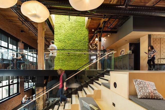 Interior Kantor Ini Menggunakan Konsep Alam Yang Unik