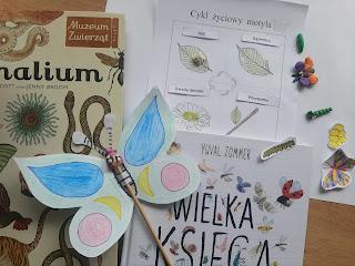 https://www.mamadoszescianu.pl/2020/05/motyle-cykl-zyciowy-zabawy-plastyczne.html
