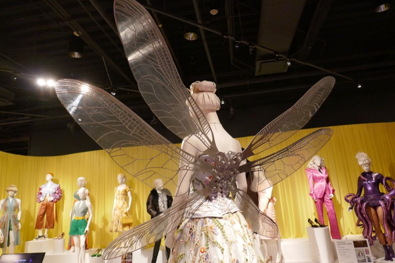 Beatrice opera costume dragonfly wings Unfortunate Events