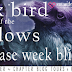 Black Bird of the Gallows by Meg Kassel | Excerpt + Giveaway