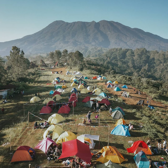Camping Gayatri Citeko Bogor Jawa Barat