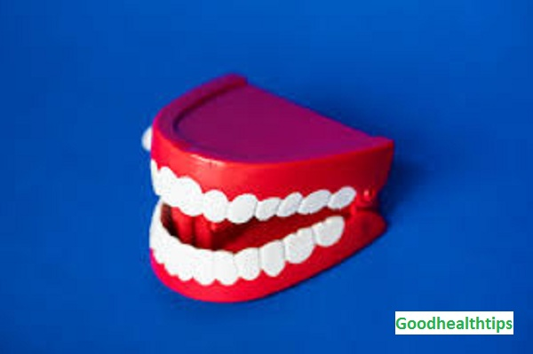 Teeth and Gum Care  Oral Health Basics
