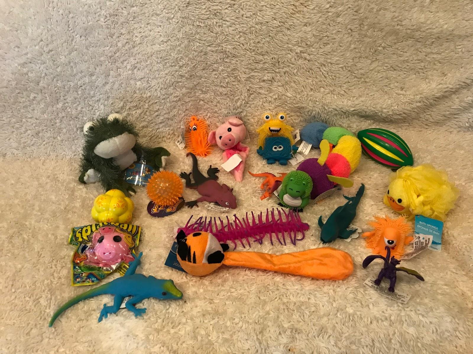 Pro Educational Toys