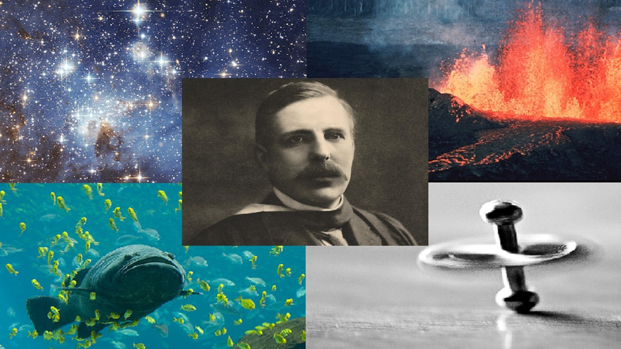 all science is either physics or stamp collecting meaning